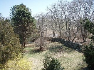 Chilmark house photo - View from house.