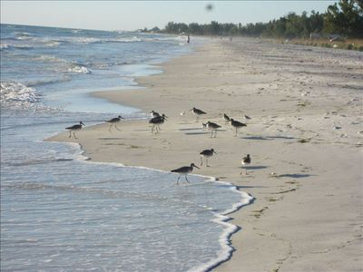 More birds than people. 11 miles of beaches allows people to spread out.