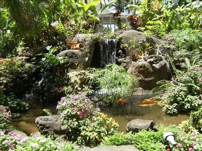 Waterfalls garden pond