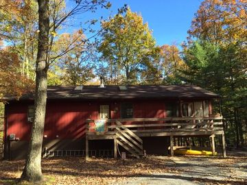 Berkeley Springs cabin rental - Sunny day at the Nut House