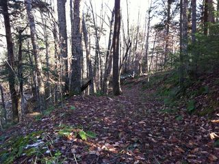 Rochester house photo - One of our favorite paths for mountain biking or walking.