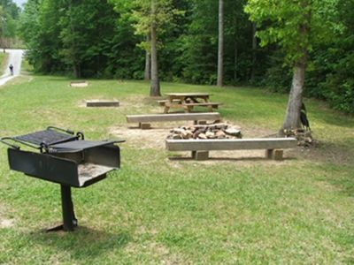 Lawn Area with Charcoal Grill, Picnic Table, Firepit and Horse Shoes