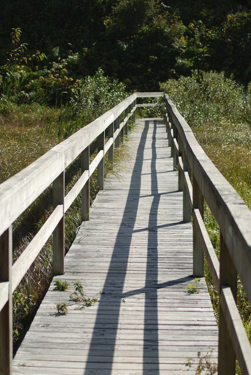Nature Trail Bridge through Wetlands enroute to the Beach