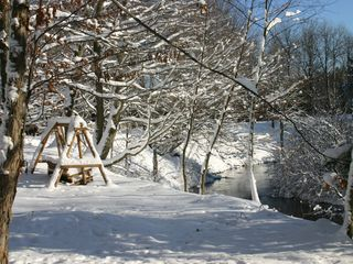 Crystal Mountain, Thompsonville cabin photo - Picturesque winter setting