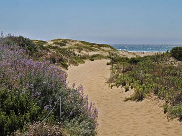 Morro Bay house rental - Amazing location... This beach path is 100 steps from our home...