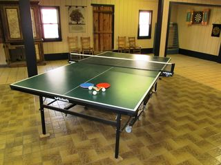 Hendersonville estate photo - Ping Pong
