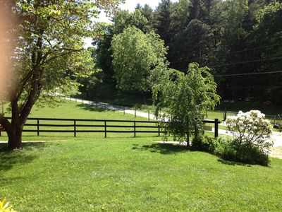 Asheville cottage rental - ~Front yard~