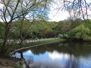 Hampstead apartment photo - Hampstead Heath 790 acres of woodlands, ponds and lakes. 10 minutes walk