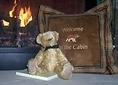 Welcome to the Cabin!