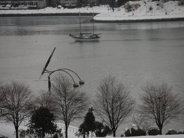 A rare snowfall on False Creek
