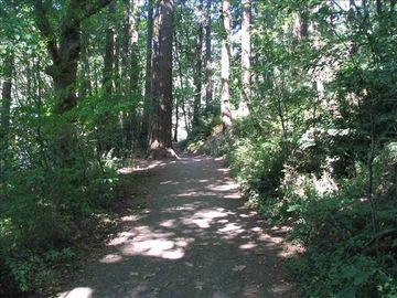 Biking and hiking trails in Mt. Tabor