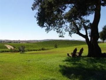 Solvang house rental - View of property overlooking Buttonwood Vineyards with most amazing sunset