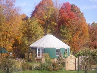 Ithaca cottage photo - Pick apples from our orchard & get more apples & cider doughnuts up the road