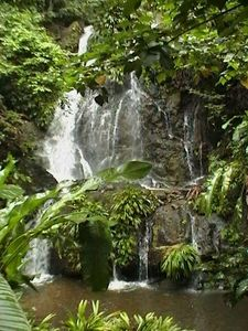 Tobago chateau / country house rental - Trev's private waterfall