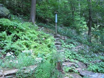 Backyard Access to the Appalachian Mountain Trail