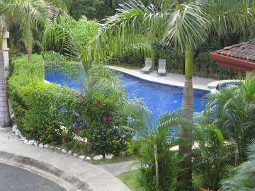 Large Tropical Pool with Lush Gardens