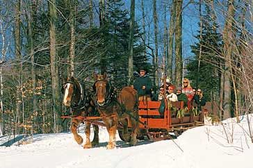 Enjoy a Sleigh Ride through Manchester's woods!