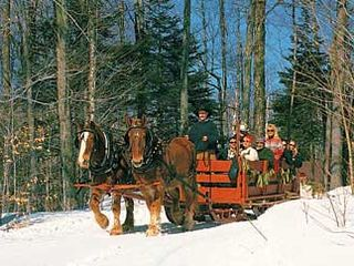 Manchester cottage photo - Enjoy a Sleigh Ride through Manchester's woods!