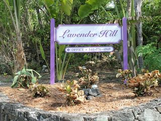 Cruz Bay condo photo - Lavender Hill is a short walk to town and offers private off-street parking.