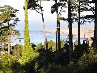 View from unit of south side of Point Lobos State Park