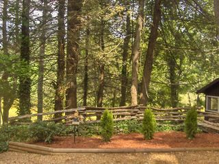 Highlands cabin photo - Beautiful Landscaping and Foliage around Stone's Throw.