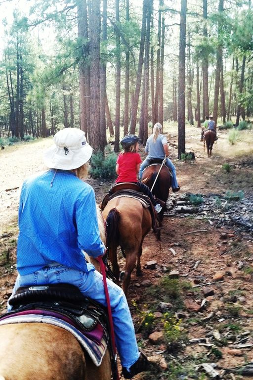 Great places to go horseback riding...or on quads...or mountain bike...or hike.