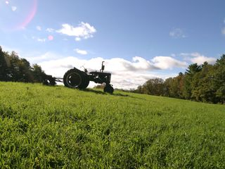 Rochester house photo - A farmers vintage tractor minutes from town.