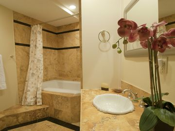 First Floor Bath - Combination Jacuzzi and Shower with stone countertops