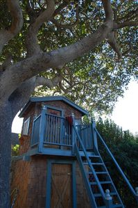 Treehouse - Great Napping Bed!