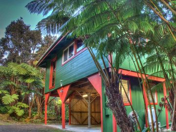 Volcano cottage rental - Hale Hubner rests in the heart of the lush fern rainforest of Volcano Village