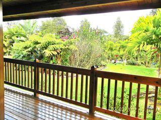 Pahoa house photo - Wrap around Lanai with Everlasting Tropical Green.
