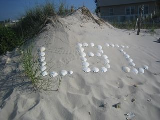 Holgate house photo - We love LBI !!!!