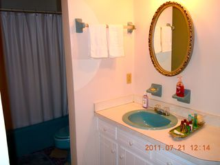 Virginia Beach house photo - Master Bath - Yes, it's Blue!