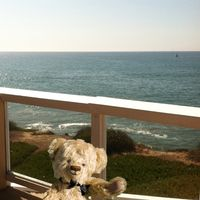 Relax and enjoy the views from the deck overlooking the beautiful Pacific ocean