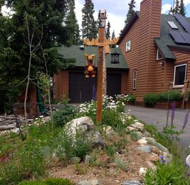Blue River house rental - Welcome to Moose Landing, wild flowers in the Spring and Summertime!