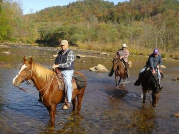 Oneida cabin rental - Big South Fork River