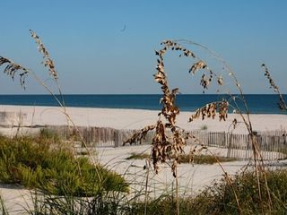 Gulf Shores house photo - Sea Oats