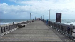 Tybee Island condo photo - Fishing Pier