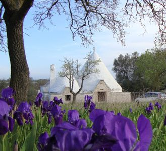 Ostuni farmhouse rental - 3-Cone Trulli with two lamia