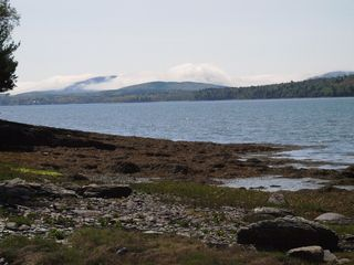 Lamoine cottage photo - Eastern View Mt. Cadillac @ low tide from our shore