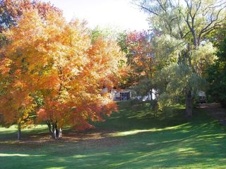 Copake house photo - Fall on our hill