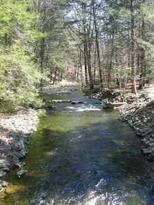 Tannersville cabin rental - View from your private bridge
