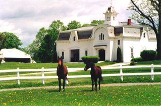 North Ferrisburg house photo - UVM Morgan Horse Farm,Weybridge,VT