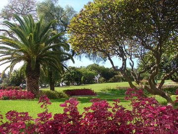 Your private gardens...Parque Santa Catarina...