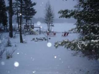 Winter is Fabulous Close to Crystal Mt. Ski Resort - Interlochen house vacation rental photo