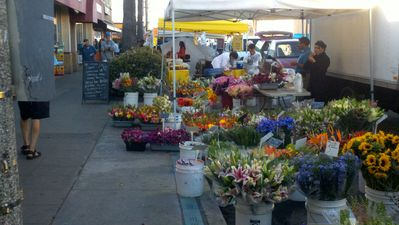 Flowers Galore at Farmer's Market