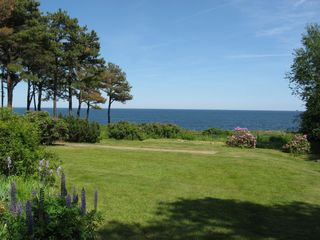 Cape Neddick house photo - Yard/shuffleboard