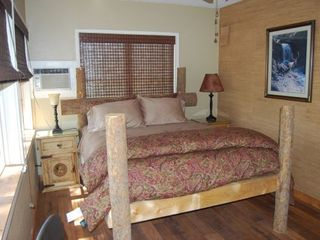Bastrop cottage photo - Bedroom 2 queen bed also has flat-screen TV w/ satellite channels