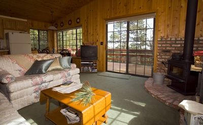 Idyllwild cabin rental - Living room area with sofa and loveseat