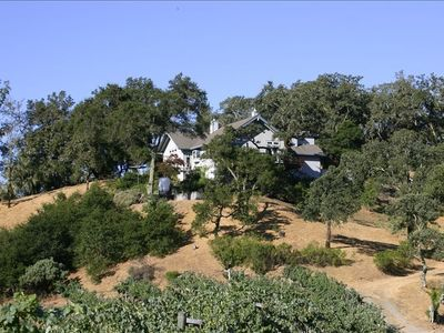 Nestled in the Trees Above the Vineyard